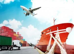 NEST Logistic & Transport Courses | Nidan Technologies Pvt Ltd